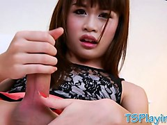Ladyboy, Masturbation, Jerking, Thai ladyboy may, Gotporn.com